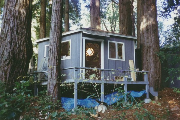 Last US home, hexagonal rental apartment, in redwood grove, Bonny Doon, California